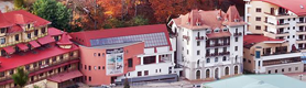Despre Complex Turistic Vila Teleconstructia Slanic Moldova